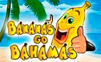 Bananas go Bahamas / Бананы едут на Багамы
